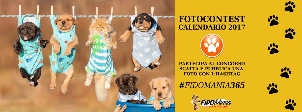 copertina-fb-contest_fidomania